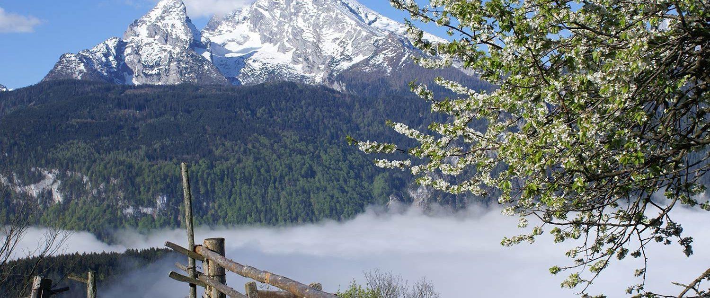 ZIPPERMAST-Berchtesgardener-Land-2-Kontakt